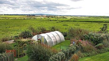 Der Garten von Sandhills House